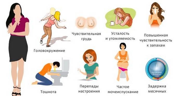 Как быстро определить беременность женщины