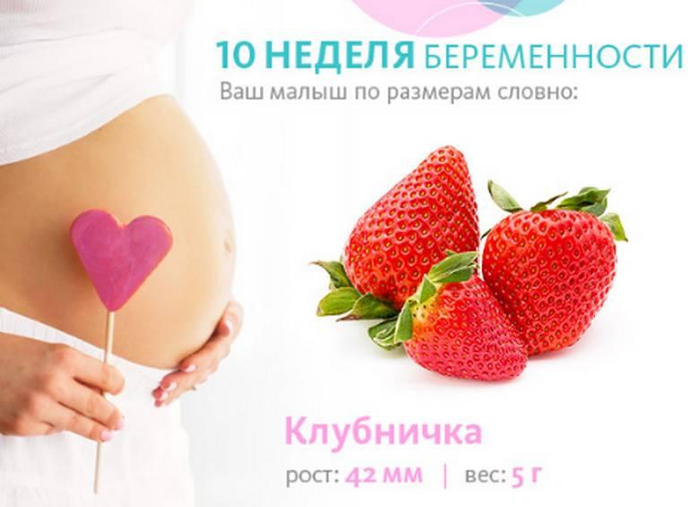 Беременность десять недель