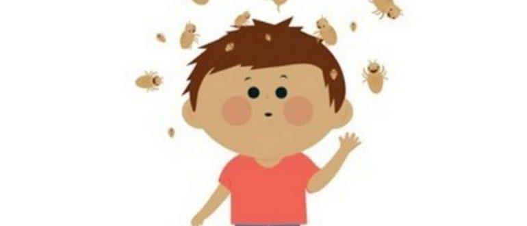 Как вывести вши у ребенка